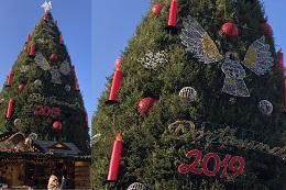 Vorschaufoto zu dem Artikel: Vom größten Weihnachtsbaum der Welt zum digitalen Highlight der Stadt Dortmund!