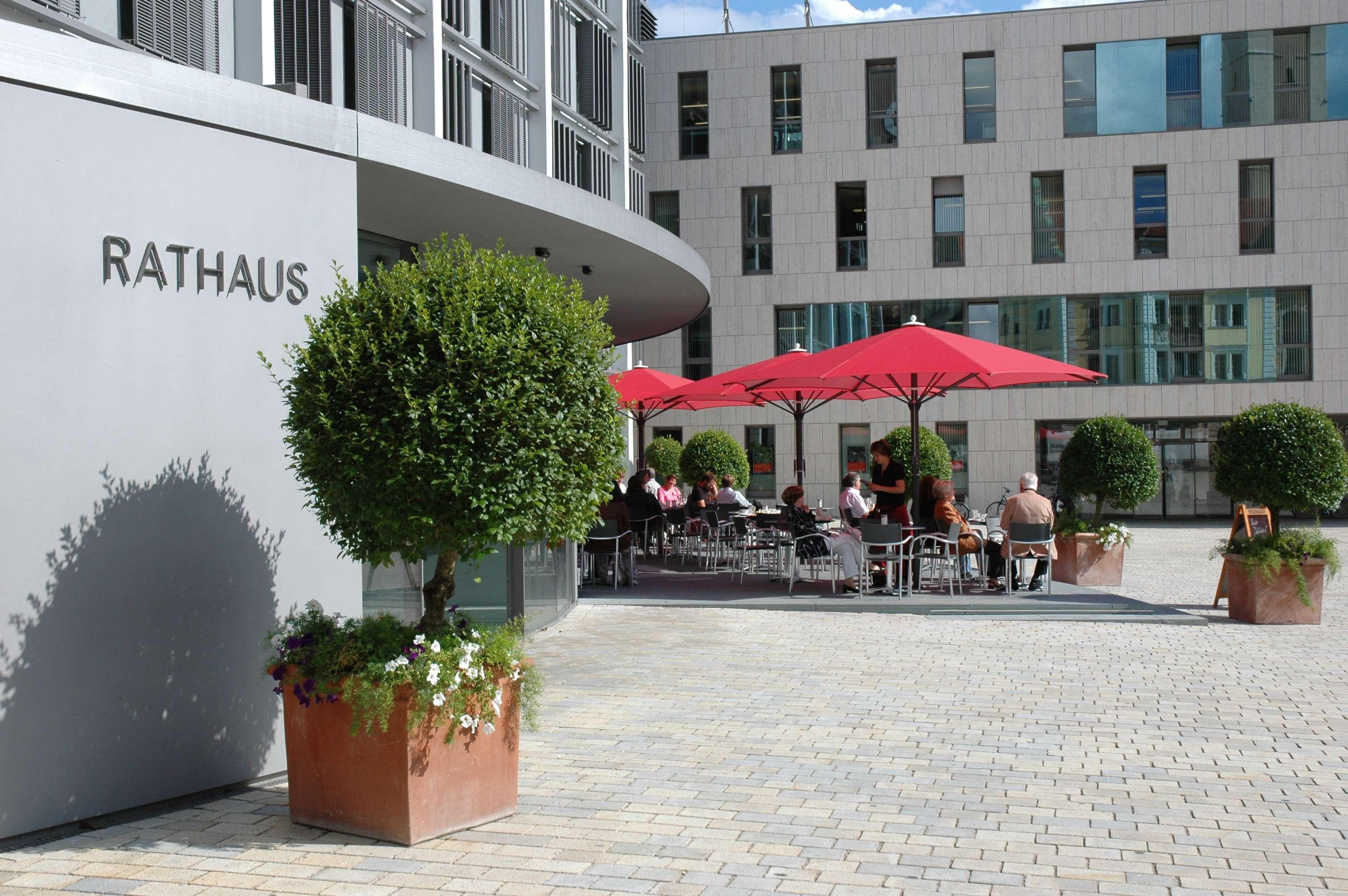 Ingolstadt Vs Köln
